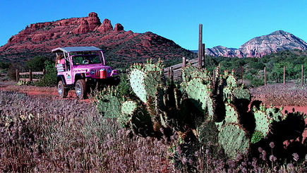 Diamondback Gulch Jeep Tour **Sedona Outback Adventure**