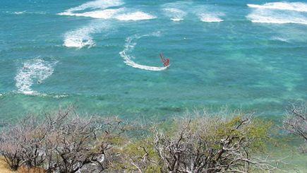 五日夏威夷檀香山半自助游 A (含珍珠港及市区观光,小环岛)(檀香山接送机)(促销团)