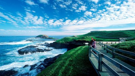 "Phillip Island Day Tour **Optional ""Penguins Plus"" Viewing / Private Penguin Parade Experience"