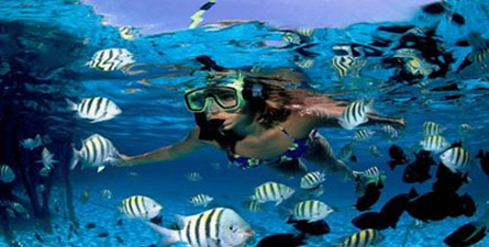 Explore the Caribbean Sea and take an underwater snorkeling adventure in Mexico!