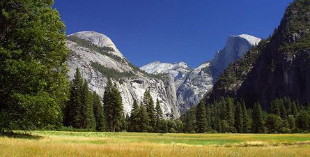 Here's your chance to get the best of Yosemite in one day, the golden wonder of California that represents ecological diversity in its truest form - Yosemite National Park.