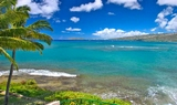 Island of Oahu Tours