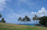 3-day Pearl Harbor, Chinatown, Honolulu City Tour Package from Honolulu(Standard Quality) ** Optional tours: Ali'i Kai Dinner Cruise, Hanauma Bay Snorkeling **
