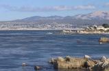 1-Day Monterey Bay Bus Tour
