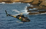 30-Minute The Pali Makani Helicopter Tour