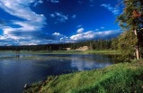 5-Day Yellowstone National Park, West Grand Canyon(Skywalk) Tour (Start in LA, End in SLC) **2 nights stay in Canyon Lodge inside Yellowstone Park**