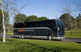 Las Vegas and Anaheim Luxury Shuttle Bus with Wifi (Oneway/ Roundtrip)