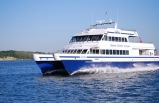 Boston Whale Watch Cruise