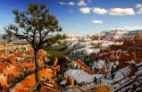6-Day Yellowstone, Bryce Canyon National Park, Antelope Canyon Bus Tour from Los Angeles