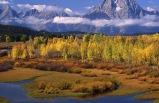 5-Day Yellowstone, Grand Teton & Don King's Western Museum Bus Tour from Salt Lake City (with airport transfer) (1 Night in Canyon Lodge)