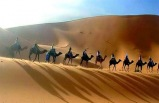 12-Day LUXURY Tour of India from Delhi - Royal Rajasthan