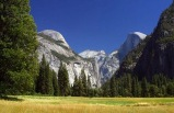 Comprehensive Exploration Tour to Yosemite & Giant Sequoias