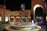 Universal Studios + L.A. by Night Tour