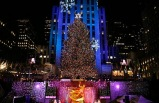 NY See The Holiday Lights! Tour