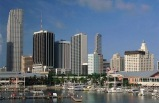 Miami Sightseeing, Hop on Hop off 1 Day Pass Tour