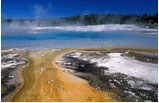 5-Day Yellowstone Bus Tour - Jackson Hole - Grand Teton - Salt Lake City (Starts in LA - Ends in SLC)
