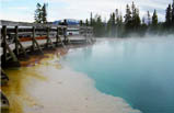 5-Day Bus Tour to Yellowstone, Jackson Hole, Grand Teton, Salt Lake City (Starts in LV - Ends in SLC)