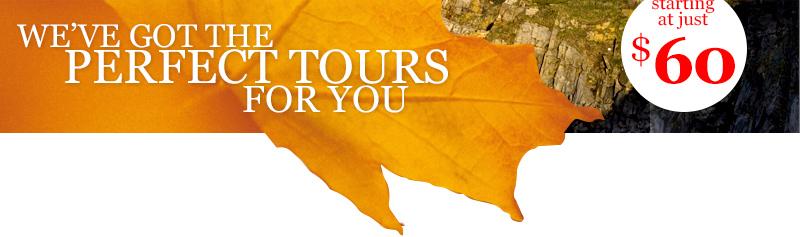 Globus Bus Tour Usa National Parks